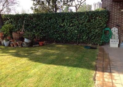 mantenimiento-jardines-valladolid-10