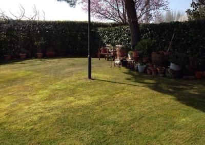 mantenimiento-jardines-valladolid-11
