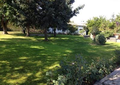 mantenimiento-jardines-valladolid-2