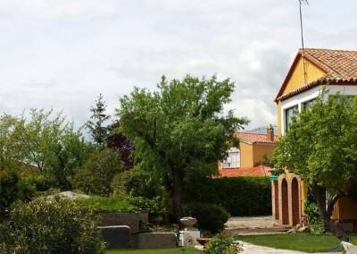 mantenimiento-jardines-valladolid-4