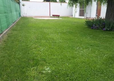 mantenimiento-jardines-valladolid-7
